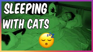 LIVING WITH CATS - Sleeping With Cats