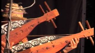 Sape Masters play Urau Kawa at the Rainforest World Music Festival