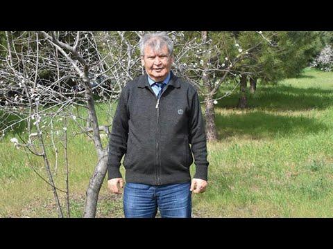 Prof. Dr. Yaşar Doğan: Sahra tozu çamur olarak yağacak