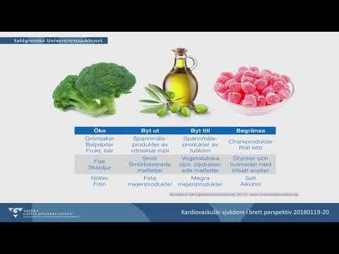 Föredrag: Ingrid Larsson | Kokboksmytologi – sant och osant om kost