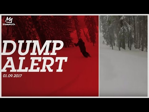 Dump Alert    01.09.2017