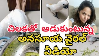 Jabardasth anchor Anasuya plays with her parrot, viral vid..