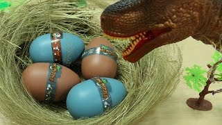 T-Rex Hatching Dinosaur Eggs Dinosaurs for Kids