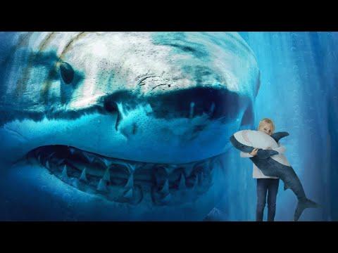Что Если Мегалодон Всё Ещё Живет на Глубине Океана?