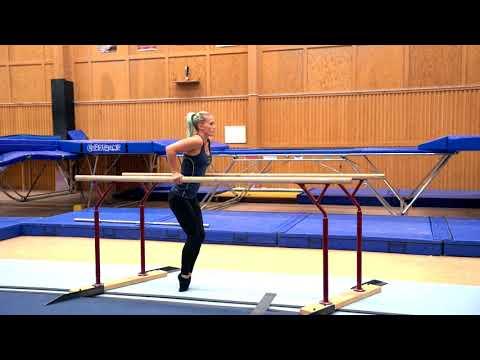 Gymnastiskt Basträningsprogram 13 Dips
