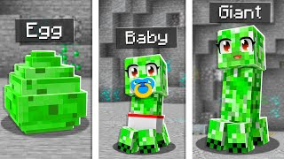 Top 5 BEST Pets to Tame in Minecraft!