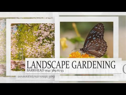 landscape gardening barrhead our services