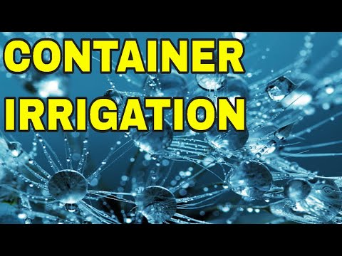 💦DIY DRIP IRRIGATION IN A CONTAINER GARDEN 💦 HOW TO AUTOMATICALLY WATER CONTAINERS🍉🌾🍅 🌽