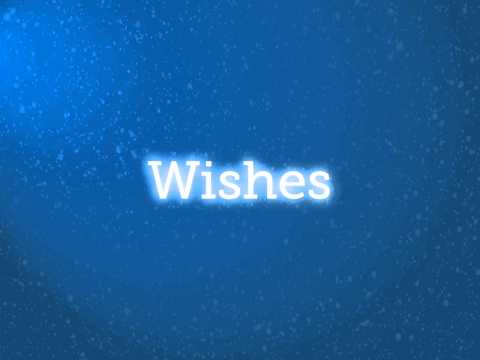 Acceller & Make-A-Wish 2013 New Year Donation
