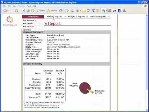 BW 7 0 Reports demo