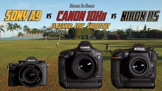 Sony A9 vs Canon 1Dxii vs Nikon D5 | Flagship Epic Shootout Review | Which Camera to Buy