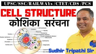 Cell structure (human cell) । कोशिका संरचना  For RRB NTPC/SSC/UPSC By Sudhir Tripathi Sir
