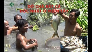 Dở chà bắt cá quá khủng, Có một không hai Không xem thì phí | Bắt cá miền tây | Fishing