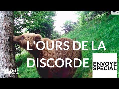 nouvel ordre mondial | Envoyé spécial. L'ours de la discorde - 4 octobre 2018 (France 2)