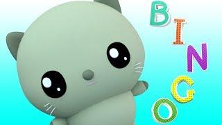 Bingo el Gato y más Canciones con Didi y sus Amigos | Didi & Friends Español