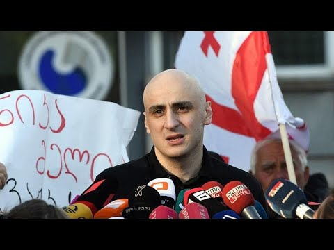 Georgia frees jailed opposition leader Nika Melia after EU posts bail