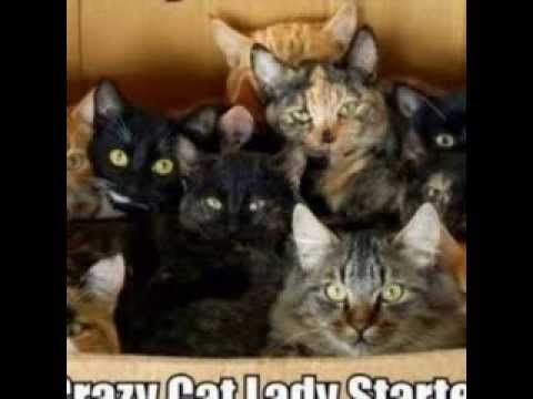 Youtube Crazy Russian Cat Lady 57