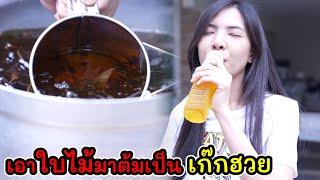 ละครสั้น ทำได้ไง เอาใบไม้มาต้มเป็นเก๊กฮวย I Lovely Kids Thailand