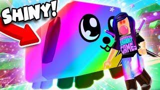 SHINY RAINBOW DOGCAT SECRET PET! 🐶🐱 (Roblox Bubble Gum Simulator)