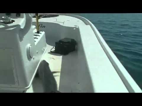 Прикольный случай на рыбалке рыба сама прыгнула в лодку