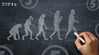 5 Theories On The Creation Of Humans