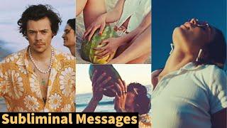 Hidden Messages In Harry's Watermelon Sugar Video