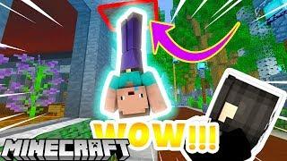 Bạn Có Thể Đi Trên Tường Bằng Block Này Trong Minecraft !!!