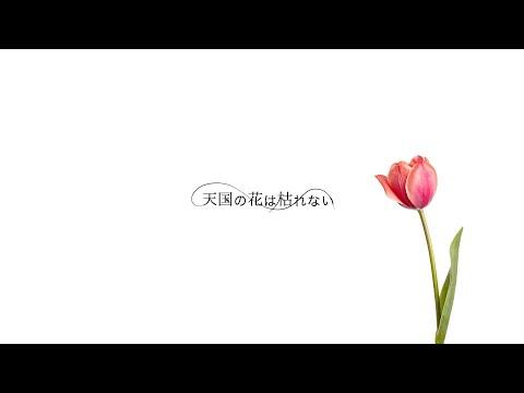 BIGMAMA - 天国の花は枯れない 2021remix (Audio)