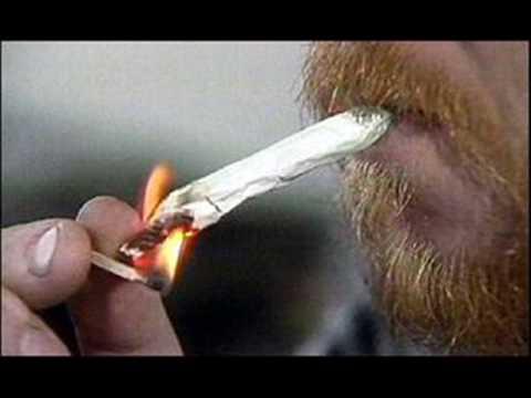 el pinche brujo conexion con monterrey marihuana