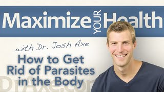 How to Get Rid of Parasites in the Body Naturally