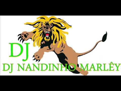 Baixar MELO DE LARA 2013  DJ NANDINHO MARLÊY