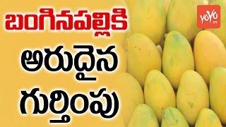 Banaganapalli mangoes of AP get GI tag..