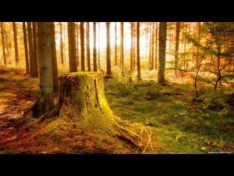 [♛] - Deemah ft. Qwes & Phil Thebeat - Freak Show. - [♛]