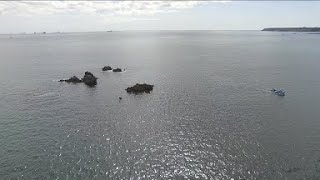 The Manacles rocks, Cornwall. Above and Below.