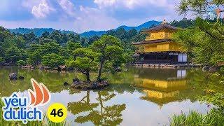 YDL #46: Lần đầu đi Nhật Bản - Tokyo, Osaka, Kyoto, núi Phú Sĩ | Yêu Máy Bay