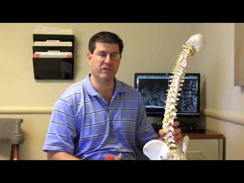 Getting to Know the Lumbar Spine HD