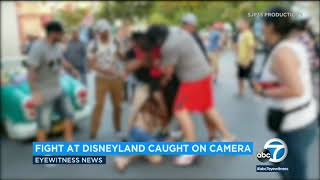 Violent brawl at Disneyland's Toontown caught on video I ABC7