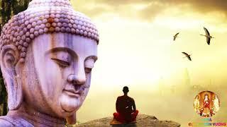 Quả Báo Ba Đời Của Lòng Tham Không Đáy - Nghe Lời Phật Dạy Về Đạo Đức Ly Tham - Rất Hay - #Mới Nhất