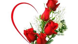 Vẻ đẹp Hoa Hồng và những câu danh ngôn hay