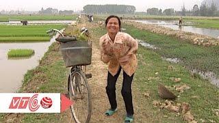 Nông dân Việt đóng Kong Skull Island 'dễ như ăn kẹo'   VTC