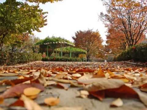 Autumn in My Heart ost.Endless Love Korean Drama