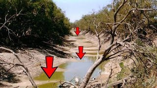 METAL DETECTING ON THE OLD BED OF THE RIVER! UNEXPECTED FINDS! CrazySeeker!