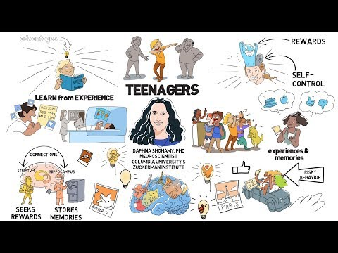 As millions of students head back to school, we're going on a journey inside the teenage brain! Come with us to find out how a unique feature of the adolescent brain may actually help prime teens for adulthood.