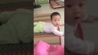 Lan Anh Nguyễn   Bé khoai của mẹ 6m con bò tương đối tốt Bí quyết