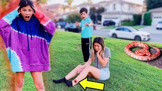 I GOT BIT BY A RATTLE SNAKE!! **SHOCKING** (Pranking the kids for 24 hours) | Familia Diamond