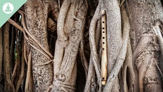 Bamboo Flute Music, Asian Music, Meditation, Relaxing