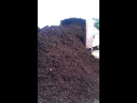 Mulch Delivery at Alex's Lawn and Turf