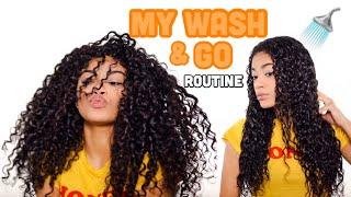 MY WASH AND GO ROUTINE! + Defined Curls | Natural Hair | jasmeannnn