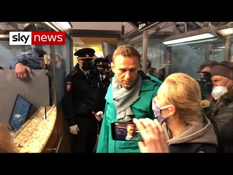 Russia: Navalny arrested at border control