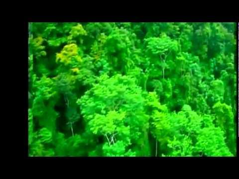 Costa Rica Calle 13 Latinoamerica.wmv